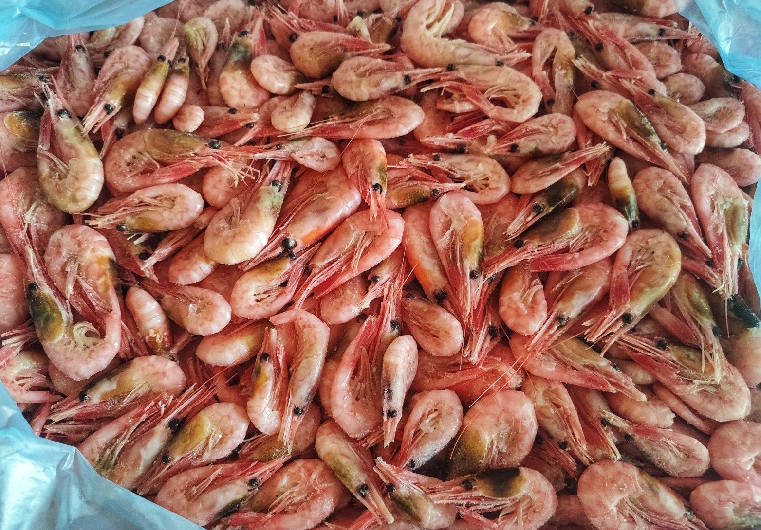Креветка северная 70/90 (5 кг/кор)